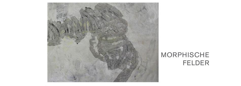 Morphische-Felder_Assenza2013_1