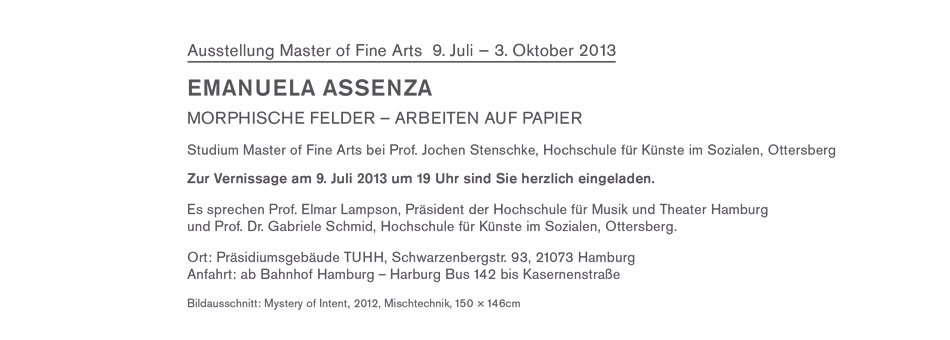 Morphische-Felder_Assenza2013_2